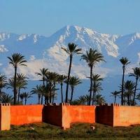 RDV CLM Marathon de Marrakech 2020