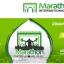 Marathon de Fes